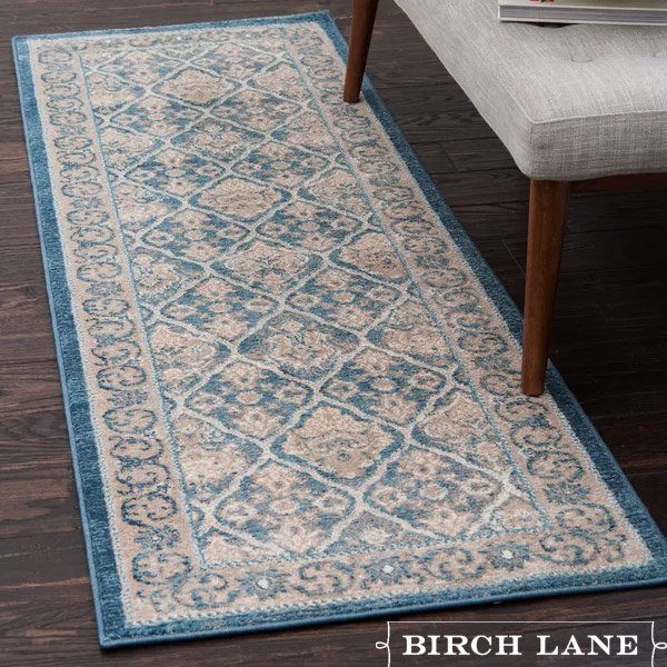 Birch Lane Discounted Area Rugs